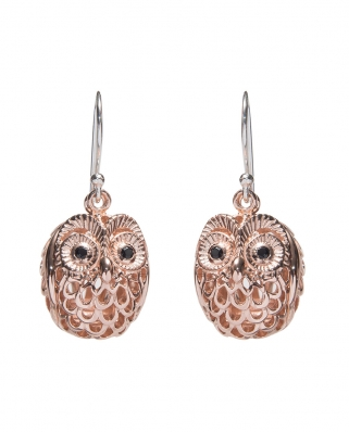 Diffuser Earrings / CXR001-2