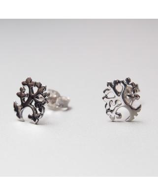 Silver Earrings/ TE201