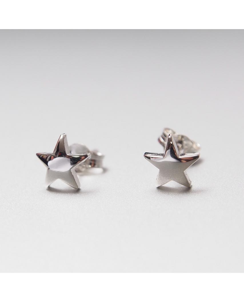 Silver Earrings/ TE203